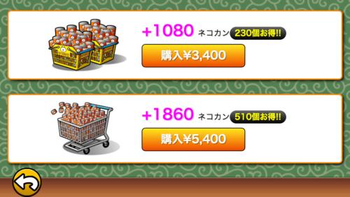nekokan-shop4