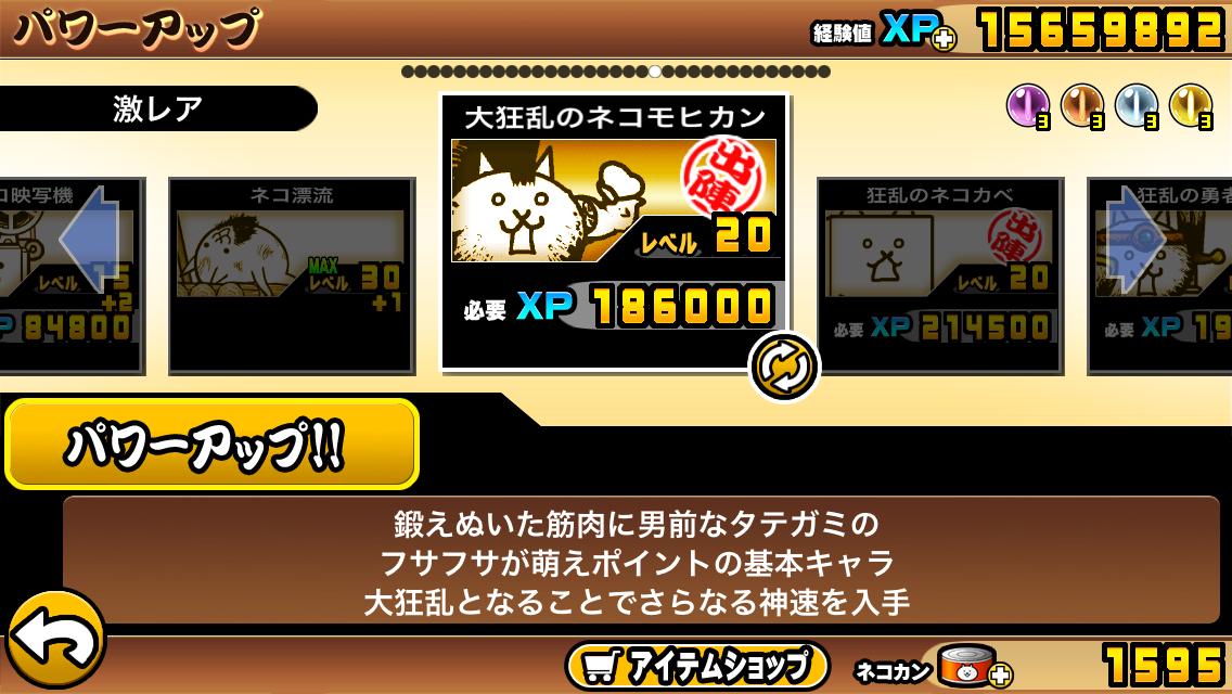 狂乱 の ネコ 降臨